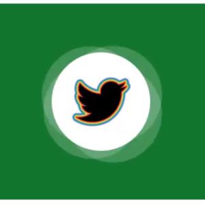 Twitter activates voice tweets